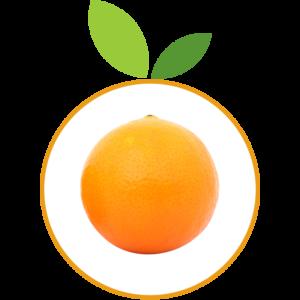 Orange Gourmande v2